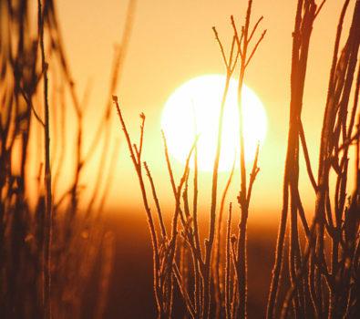 Rüyada Güneş Görmek