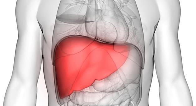 Rüyada Karaciğer Görmek